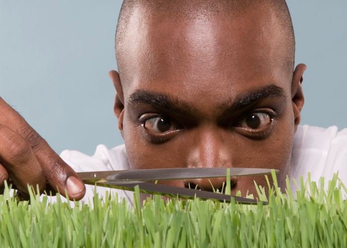 Perfectionism Man cutting grass with scissors